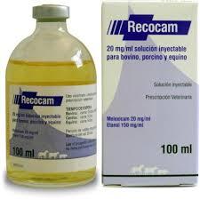 Recocam