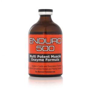 Enduro 500