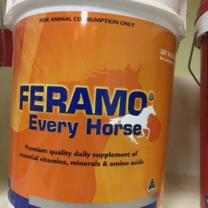 FERAMO EVERY HORSE